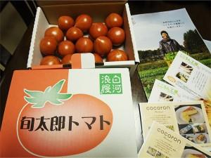 '福島県白河の高糖度トマト、旬太郎トマト