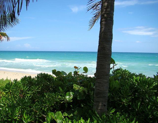 beach-13854_640