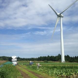 風車と中継車と案山子