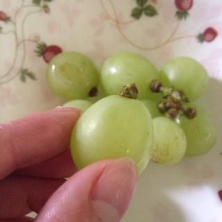 ブドウの保存は茎を少し残す