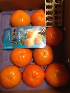 熊本産太秋柿