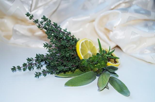herbs-1061631_640