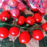 完熟ミニトマト