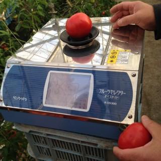 トマトの糖度計