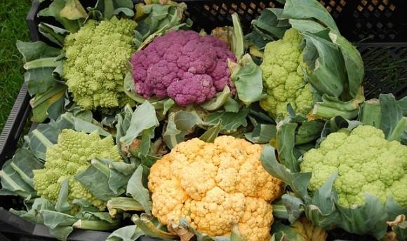 cauliflower-カリフラワー