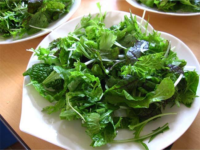 わさび菜・紫ちりめん高菜・水菜のサラダ