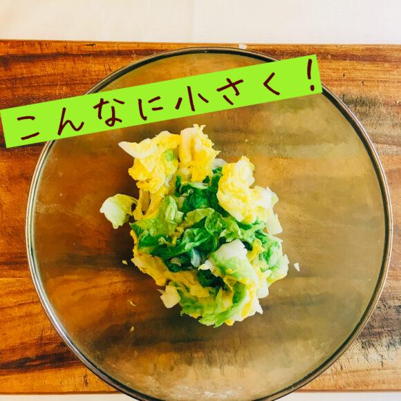 レンチン白菜